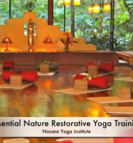 The yoga studio at Nosara Yoga Institute