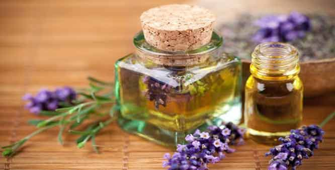 Two small bottles of lavender oil and a few lavender flowers around them